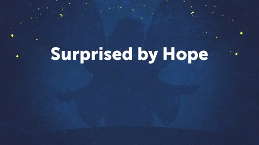 Surprised by Hope (2)