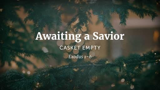 Awaiting a Savior