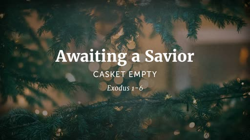 Awaiting a Savior