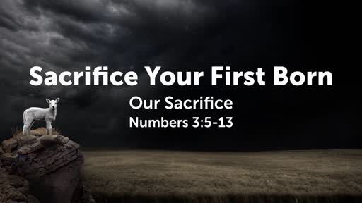 Numbers 3:5-13: Sacrifice Your First Born