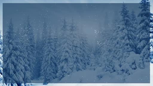 Dec 8