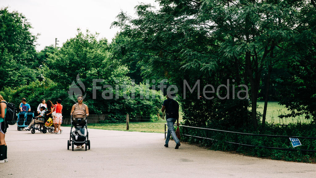 Walking in the Park large preview