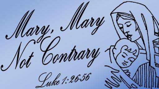 Mary, Mary, Not Contrary