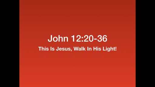 This is Jesus, Walk In His Light