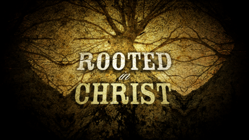 Colossians 2:4-10 - Rooted in Christ - December 8th