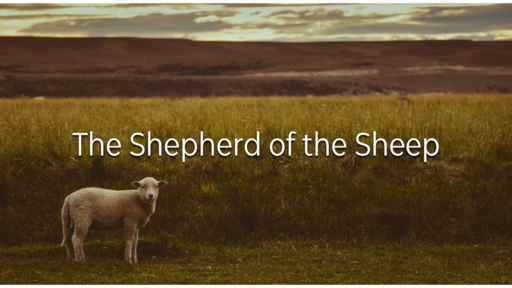 The Shepherd of the Sheep