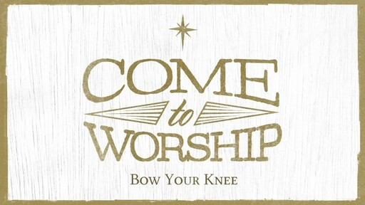 Bow Your Knee