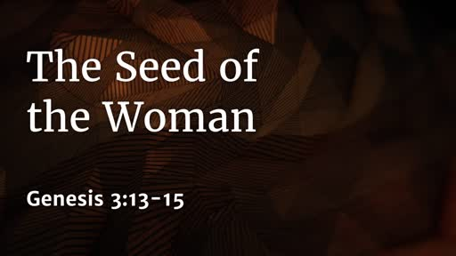 473 - Seed of the Woman
