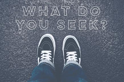 What Do You Seek?