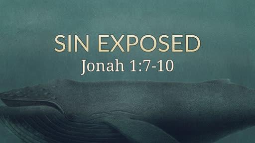 Sin Exposed