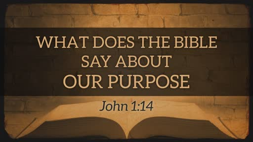 Our Purpose in Life