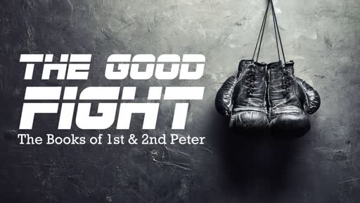 The Good Fight: Prepared and Sober Minds (1/5/2020)
