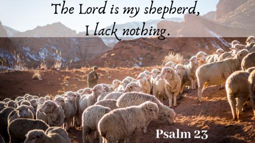 My Shepherd King - Psalm 23 part 1