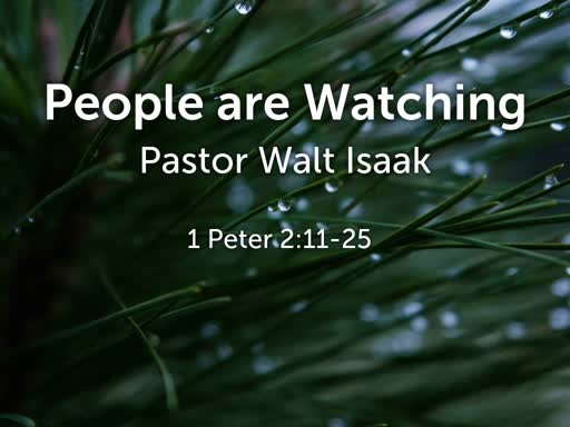 People are Watching