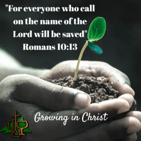Growing in Christ: The Foundation