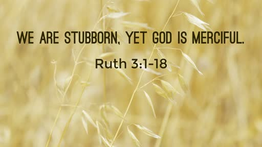 (Ruth 3:1-18) We are stubborn, Yet God is merciful.