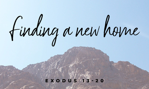Exodus - Finding a new home