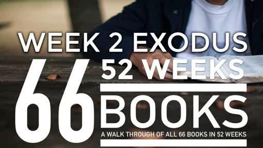 66/52 - Week 2 Exodus