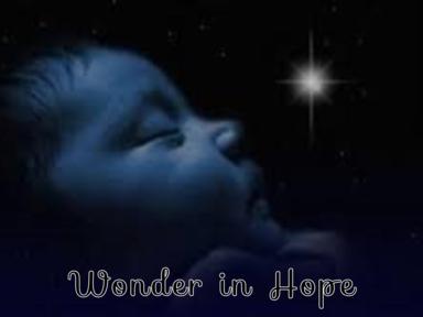 Wonder in Hope