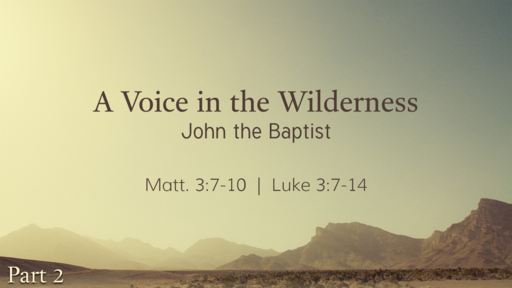 2020-01-12 PM (TM) - Life of Christ: #17 - A Voice in the Wilderness: John the Baptist, Pt. 2