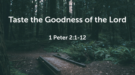 Taste the Goodness of the Lord / 1 Peter 2:1-12