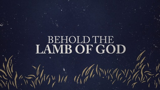 Behold the Lamb Advent Series