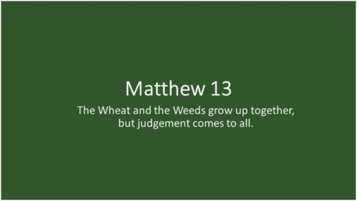 Wheat & the Weeds