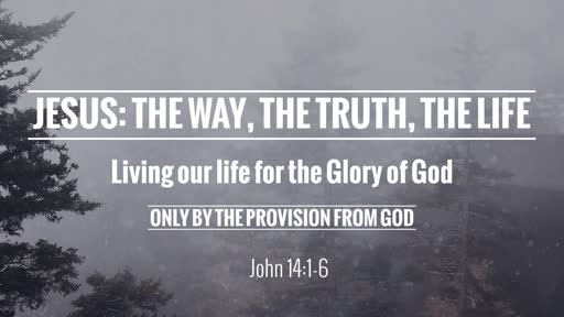 Jesus: The Way, The Truth, The Life
