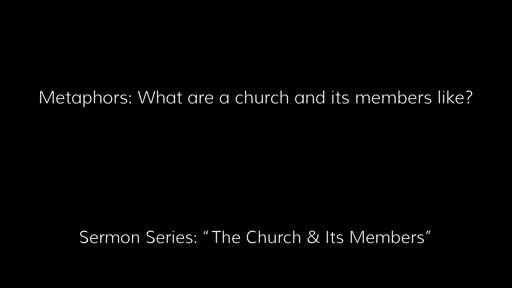 Metaphors: What are a church and its members like?