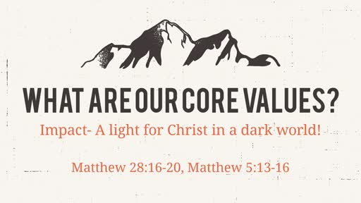 What are our core values?