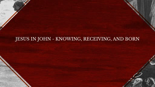 Jesus in John - Knowing, Receiving, and Born