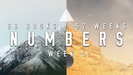 66/52 - Week 4 Numbers