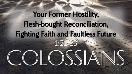 Your Former Hostility, Flesh-bought Reconciliation, Fighting Faith and Faultless Future