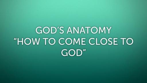 God's Anatomy