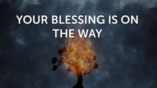 Your blessing is on the way
