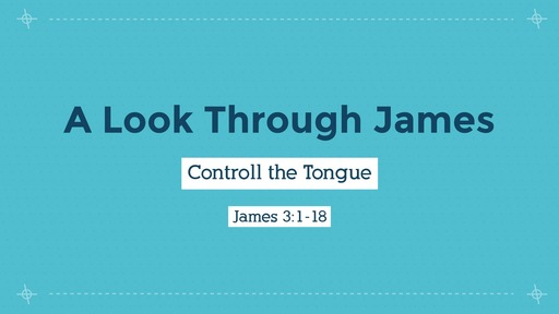 2-9-20 Controll the Tongue
