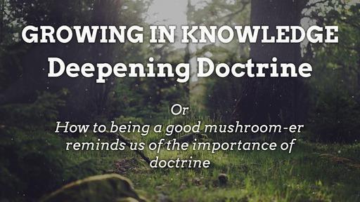 Growing in Knowledge : Deepening Doctrine