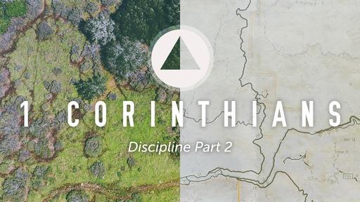 Discipline Part 2