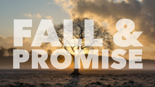 Fall & Promise