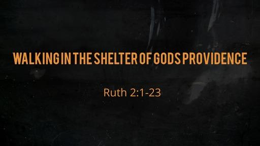 Walking in the shelter of Gods providence