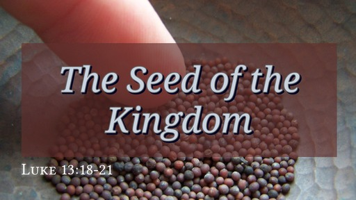 """""""The Seed of the Kingdom"""""""