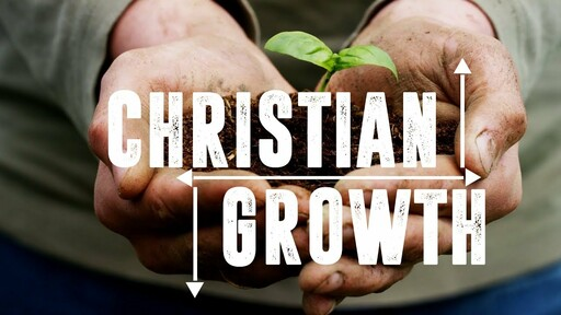 Thrive: Growing In God