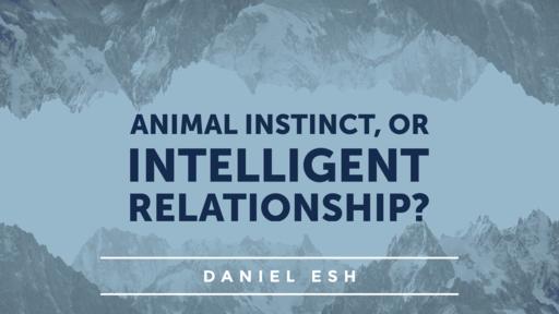 Animal Instinct, or Intelligent Relationship? (Ephesians Series: Part 12)