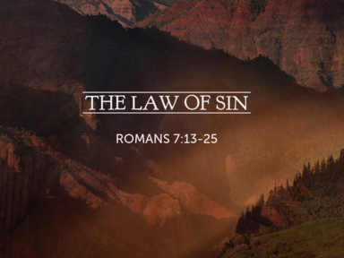 The Law of Sin