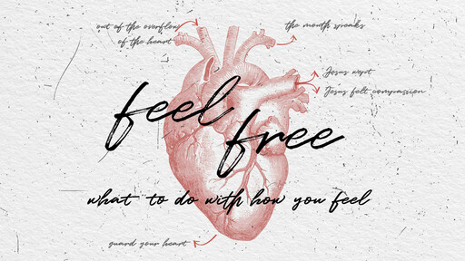 Feel Free: What to Do with How you Feel
