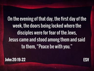 Discover the Gospel 5.3