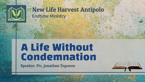 A Life Without Condemnation