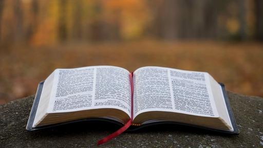 Reject False Teaching