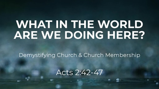 What In The World Are We Doing Here? | Acts 2:42-47