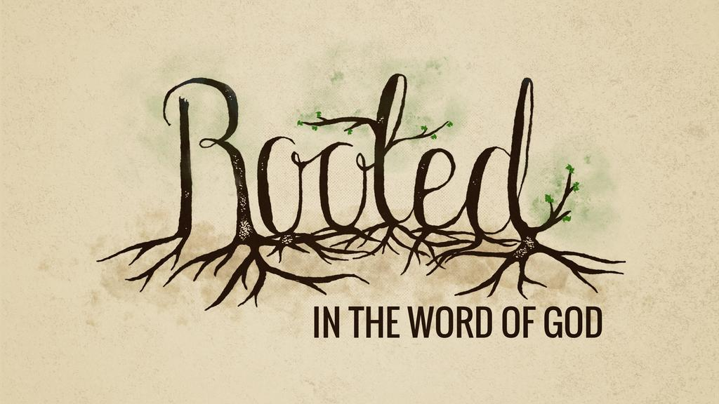 Rooted in the Word of God large preview